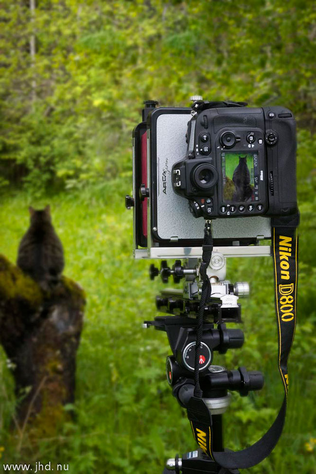 Nikon D800 Large Format Photography by Jan Hkan Dahlstrm