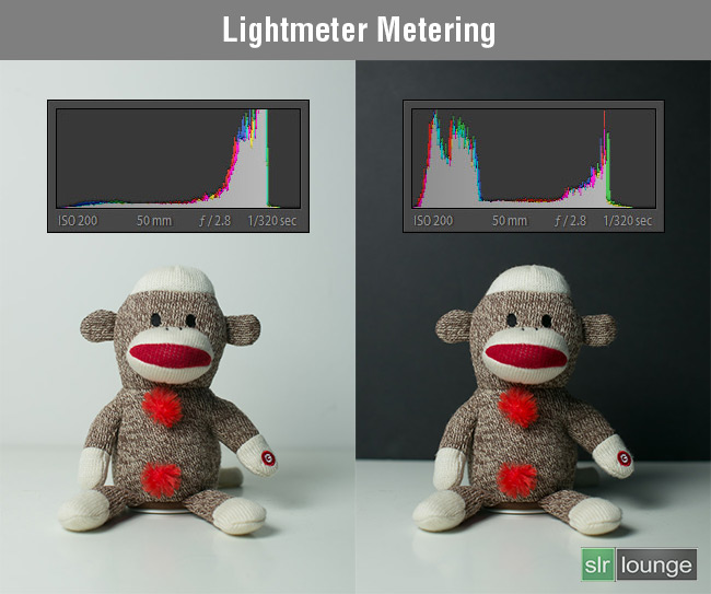 Monkey-Lightmeter by SLR Lounge