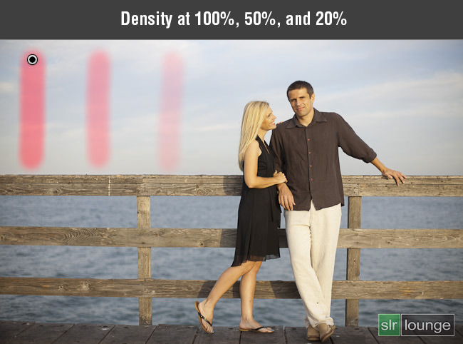Density at 100-50-20%