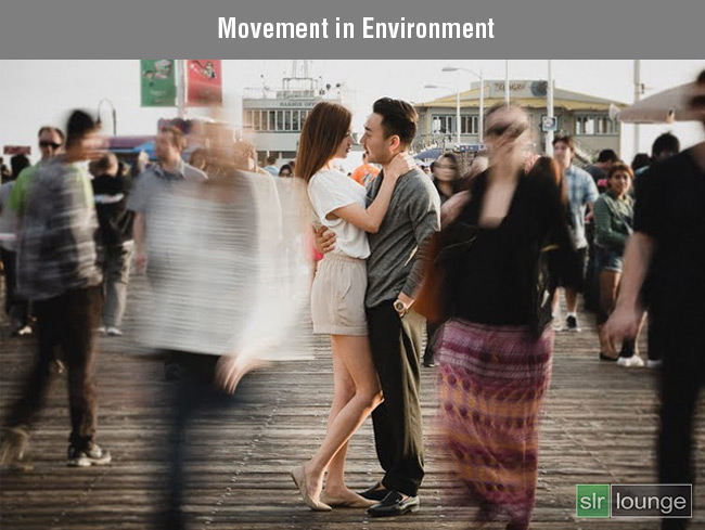 Movement in Environment by Lin and Jirsa Photography