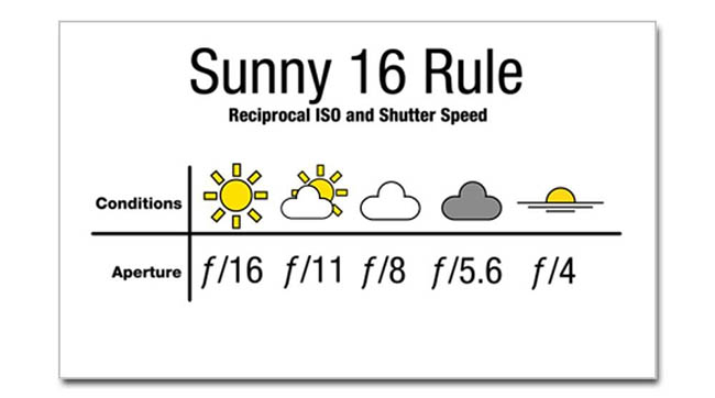 Sunny 16 sticker by CafePress