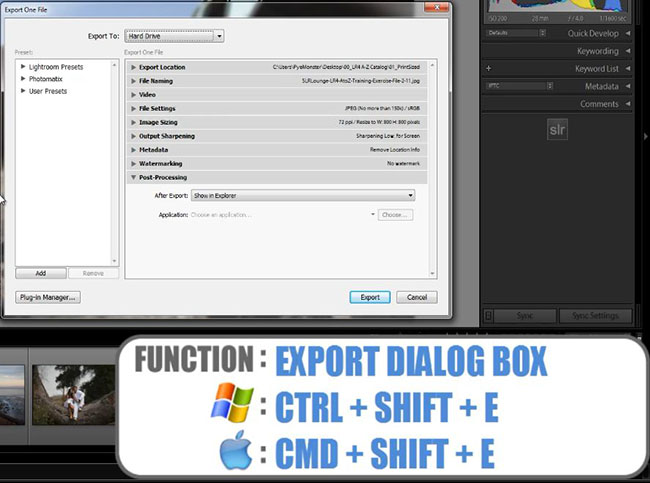 Export Dialog