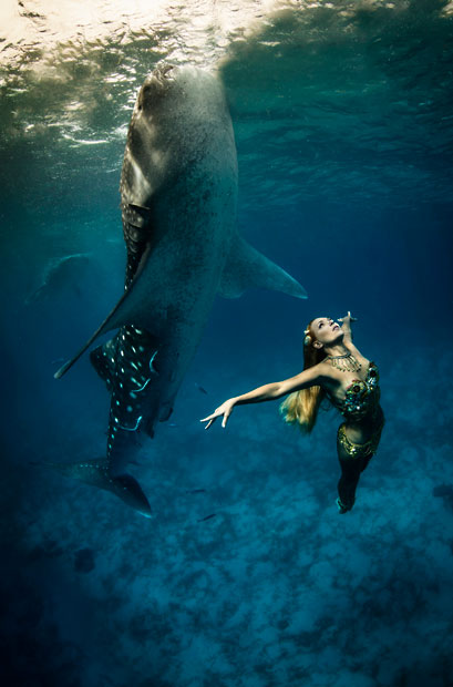Whale Shark Fashion Shoot 2