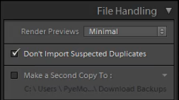 03_file-handling-panel-standard-import-preset