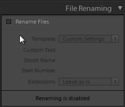 04_file-renaming-panel-standard-import-preset