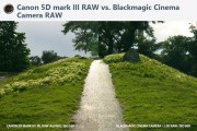 Splash-5DmkIII-RAW-vs-BMCC-RAW2