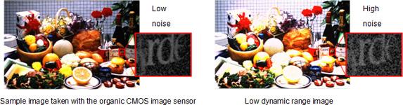 Panasonic Fuji Organic Sensor Sample