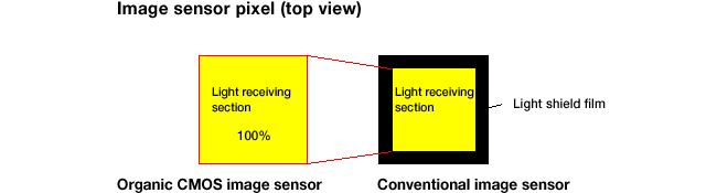 Panasonic Fuji Organic Sensor Top View